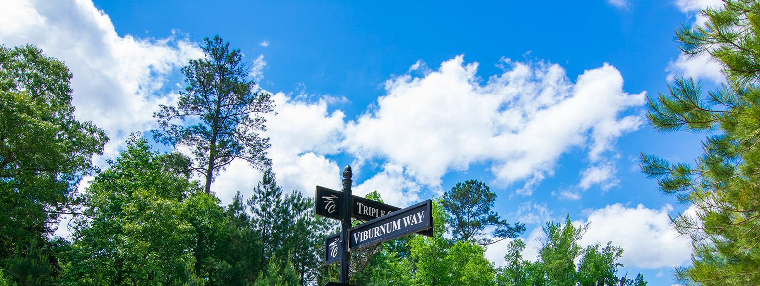 Home Near Callaway Gardens, virburnum way,clouds, nature, john brunn realty