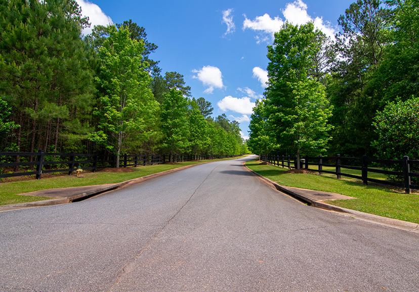 Home Near Callaway Gardens, john brunn realty, driveway, trees, nature
