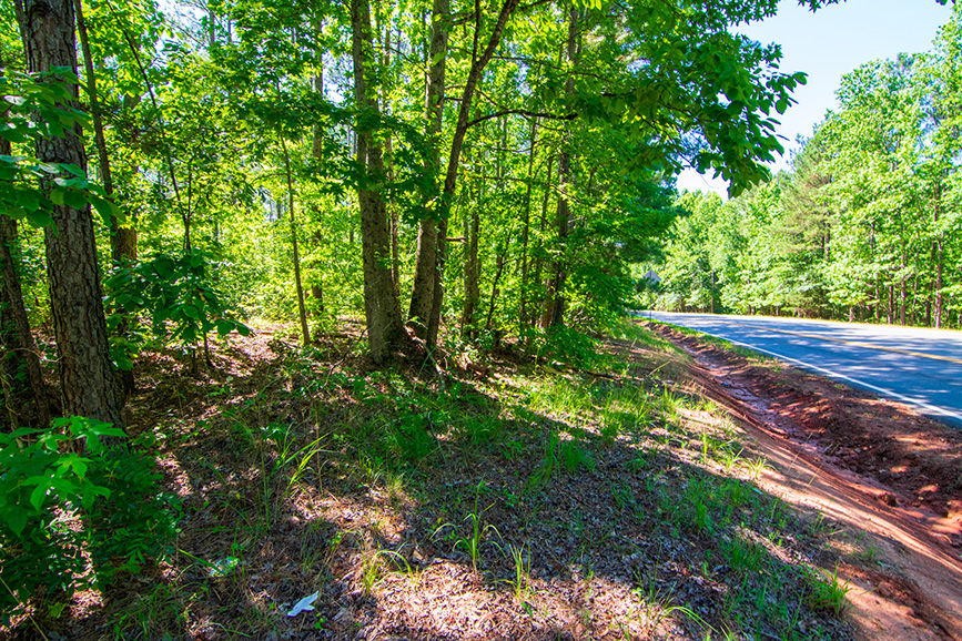 nature, john bunn realty, greenville ga, realtorm housing