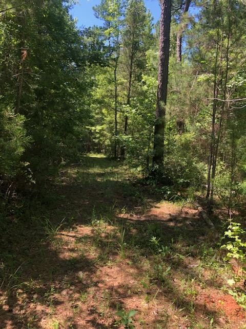Waverly hall ga john bunn listing in the woods