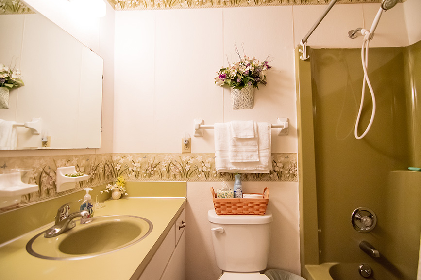 John Bunn realty bathroom in home for sale in Ellerslie ga