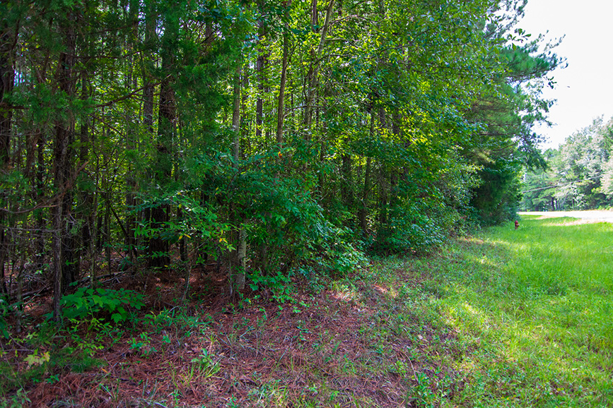 122 lower blue springs rd, hamilton ga, housing for sale, houses, realty, trees, scenic house, harris county