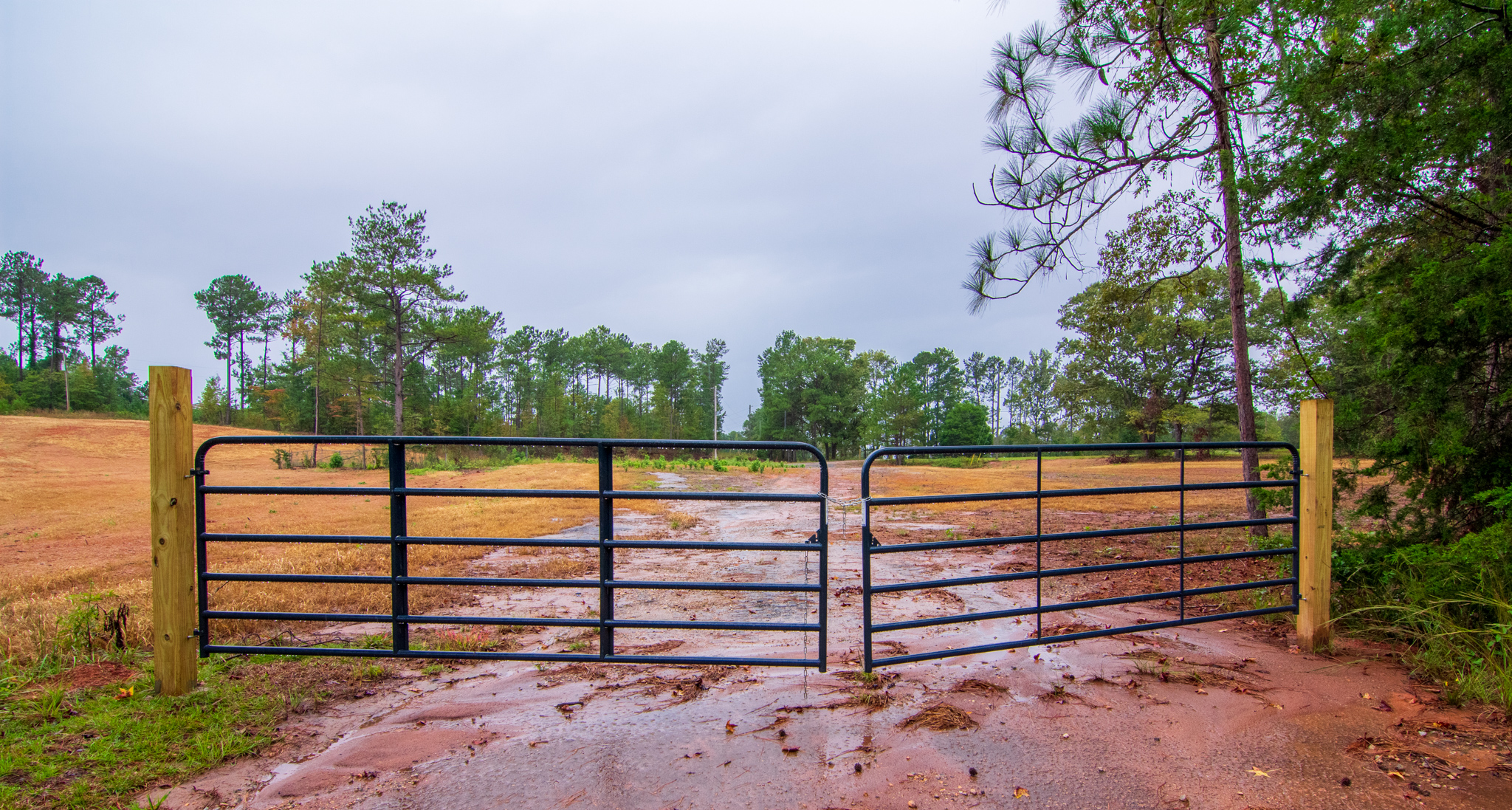gate into land for sale by john bunn realty
