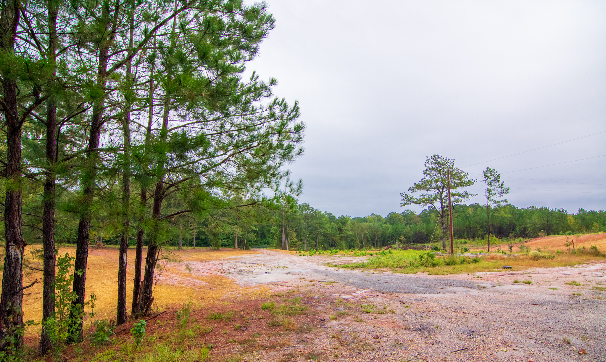 land for sale john bunn realty