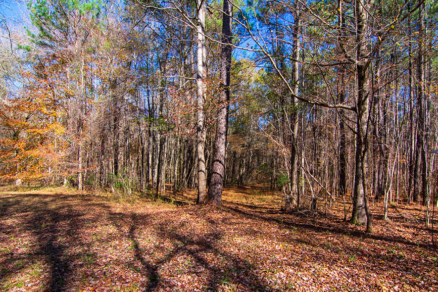 open wooded are john bunn realty harris county ga