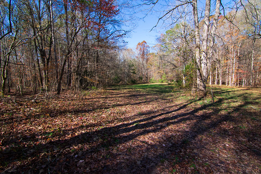 open wooded area land for sale harris county ga john bunn realty