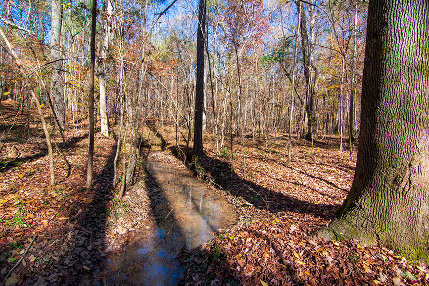 stream in wooded area land for sale john bunn realty