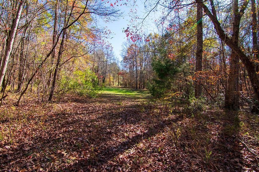 Land for sale by John Bunn Realty Harris County, GA