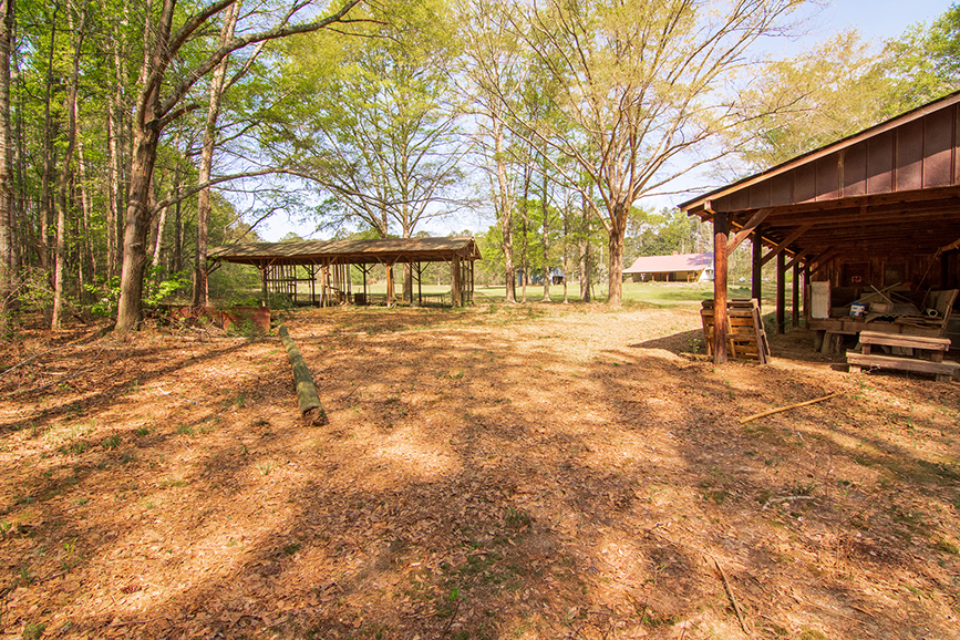 Over top covering shed, property for sale, John Bunn Realty, 18420 GA Highway 116 Shiloh, Georgia, Columbus, Georgia, open area with a tree-covered area surrounding, John Bunn