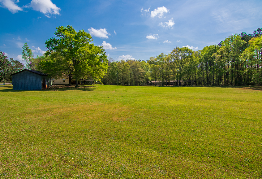 Beautiful green area surrounded by trees in the back, 18420 GA HWY 116 Shiloh, GA, John Bunn Realty, Columbus, Georgia, forested area and open area, greenery, great shade
