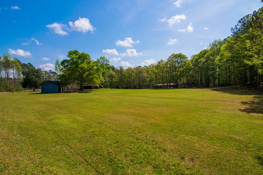 Amazing open green grass yard, trees surrounding, property for sale, 18420 GA HWY 116 Shiloh, GA, John Bunn Realty, property for sale, greenery, forested area