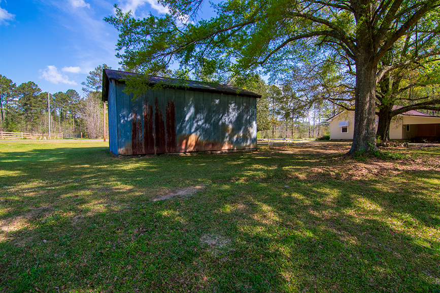 good shade and sun, decent sized tin shed for storage, 18420 GA Highway 116 Shiloh, GA, John Bunn Realty, John Bunn, property for sale, surrounded by tress