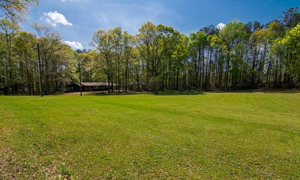 Beautiful green area surrounded by trees in the back, 18420 GA HWY 116 Shiloh, GA, John Bunn Realty, Columbus, Georgia, forested area and open area, greenery, property for sale