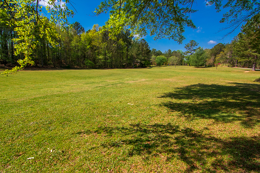 Amazing open field surrounded by trees for sale with John Bunn realty, Columbus, Georgia, 18420 GA HWY 116 Shiloh, GA, John Bunn, property for sale, very green, looks beautiful