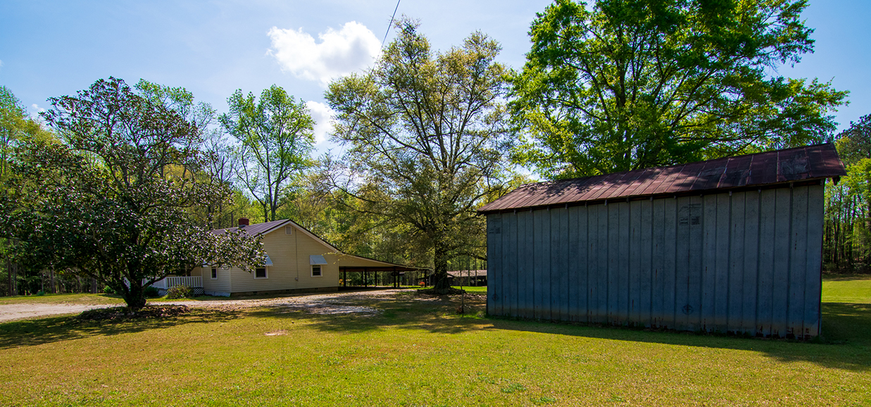 great yard, decent sized tin shed for storage, 18420 GA Highway 116 Shiloh, GA, John Bunn Realty, Columbus, Georgia, John Bunn, property for sale, surrounded by tress