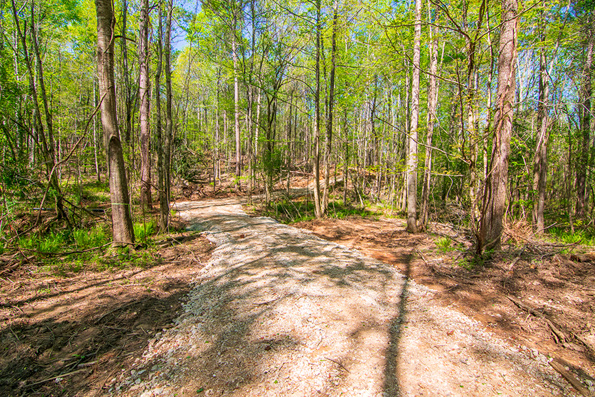 Beautiful trail surrounded by trees on property for sale with John Bunn Realty in Columbus, Georgia, 0 Highway 85 Waverly Hall, GA, tree-covered, forested area, forested property for sale, John Bunn, rocked trail, amazing greenery