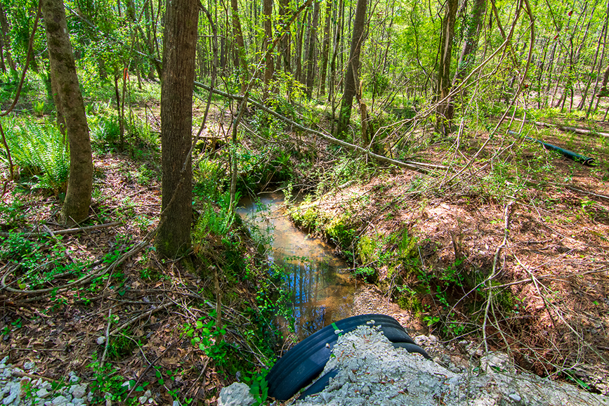 John Bunn Realty, forested property sale, Columbus, Georgia, 0 Highway 85 Waverly Hall, GA, property for sale, forested area, John Bunn, beautiful creek