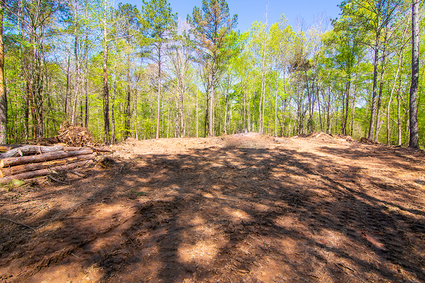 Amazing property with trees all around for sale in Columbus, Georgia 0 Highway 85 Waverly Hall, GA with John Bunn Realty, forested area, forested property for sale, forested property, John Bunn
